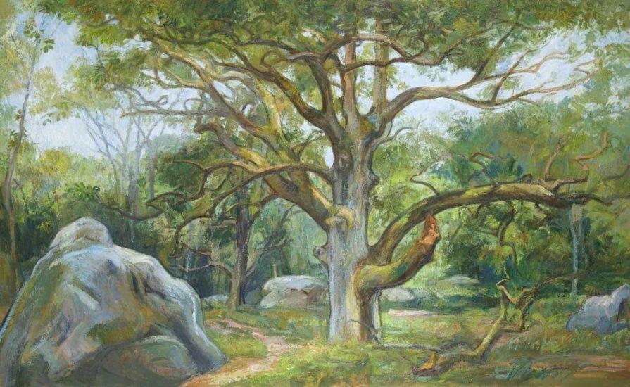 Le chêne Sully (huile sur toile) - 97 x 146 cm